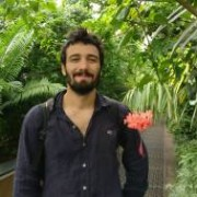 Committed Italian, French Teacher in London